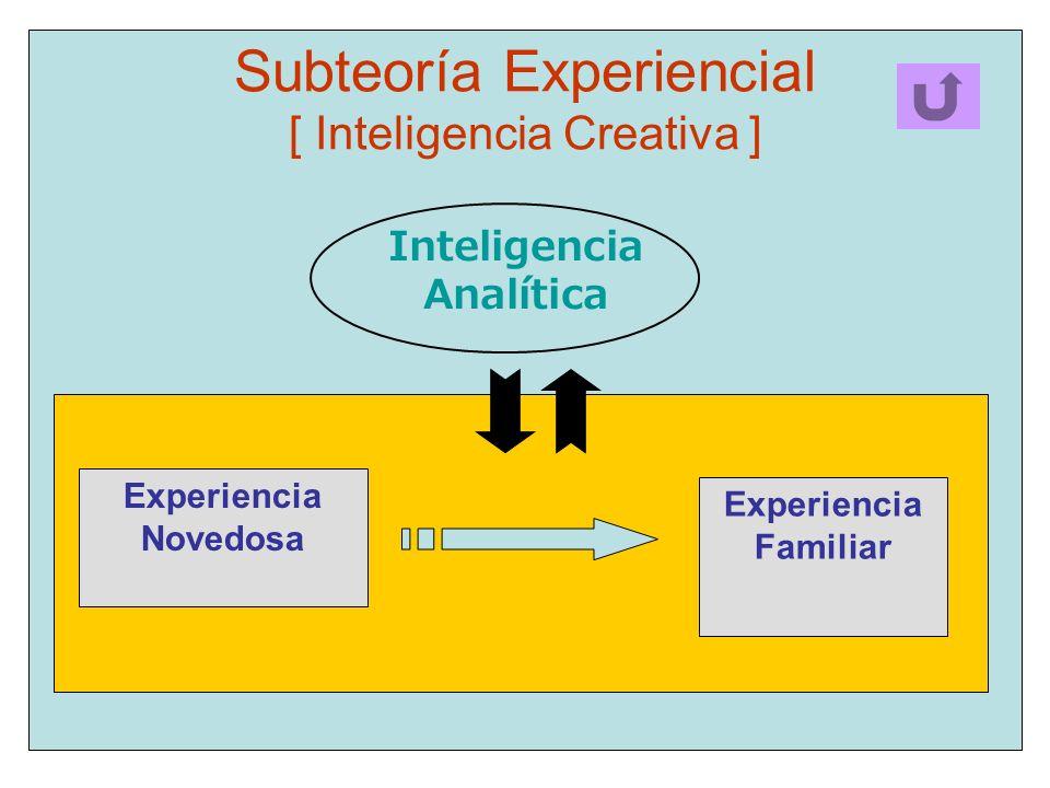 Subteoría Experiencial [ Inteligencia Creativa ]